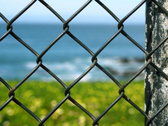 フェンスの向こう