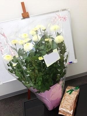 2013年の菊