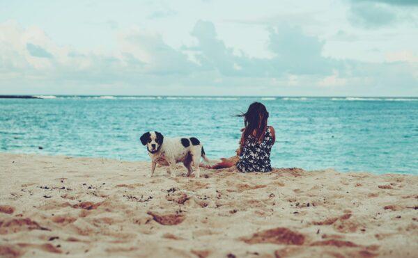 浜辺の女性とワンちゃん